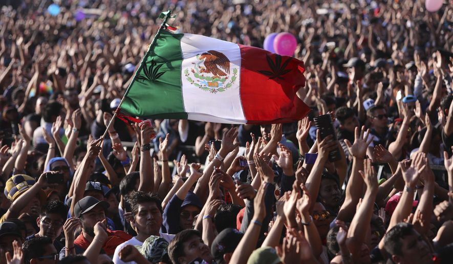 A music fan waves a Mexican national flag during the performance of Colombian rock ban Doctor Krapula at the 18th annual Vive Latino music festival in Mexico City, Saturday, March 18, 2017. The two-day rock festival is one of the most important and longest running of Mexico. (AP Photo/Christian Palma)