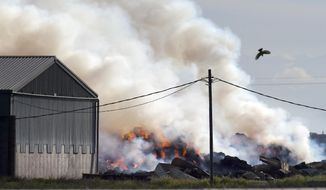 A hawk dives as a hay fire southeast of Cherry and North Avenues sends a plume of smoke westwards Tuesday morning, March 28, 2017, south of Fresno, Calif. (Eric Paul Zamora /The Fresno Bee via AP)
