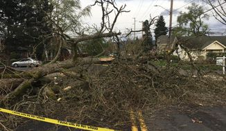 A fallen tree lies across a road after windy weather in Portland on Friday, April 7, 2017. (Dave Killen /The Oregonian via AP)