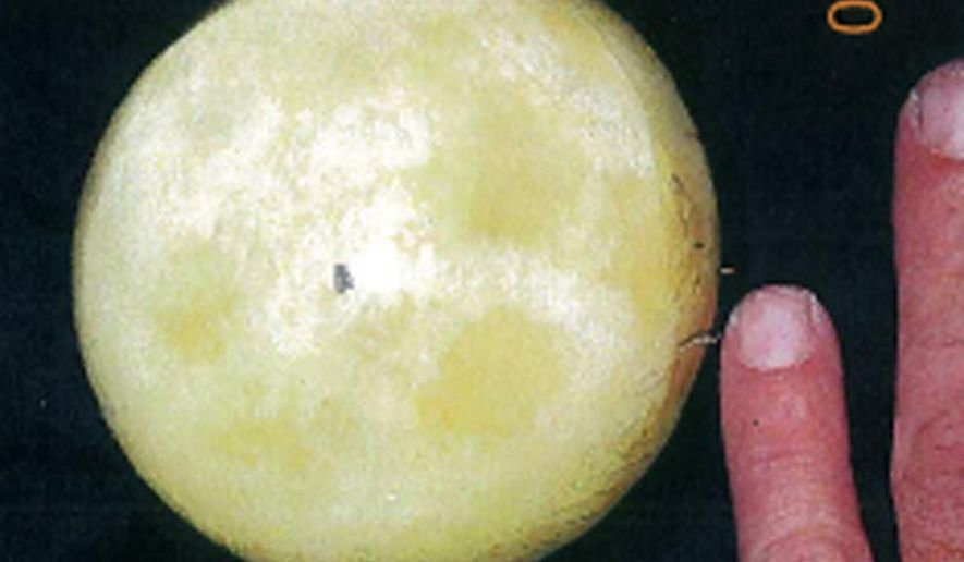 FILE- This undated file image displayed on a search warrant provided by the U.S. District Court for the Central District of California shows a very small piece of moon rock, center, taken from Joann Davis during a sting operation. A federal agent unnecessarily degraded Davis when he interrogated her for nearly two hours in 2011 after seizing the moon rock she said her late husband had received from astronaut Neil Armstrong, a federal appeals court said Thursday, April 13, 2017. (U.S District Court for the Central District of California via AP, File)
