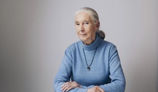 """In this April 7, 2017 photo, British primatologist, ethologist, and anthropologist Jane Goodall poses for a portrait in New York to promote the Disneynature film, """"Born in China."""" (Photo by Victoria Will/Invision/AP"""