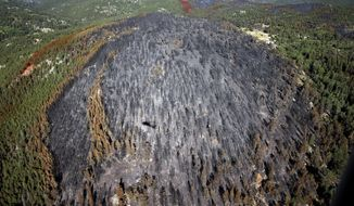 FILE - In this July 12, 2016, file photo, fire damage is viewed from a Colorado National Guard Blackhawk helicopter after four days battling the blaze, outside Nederland, Colo. Colorado wildland firefighters expect an average to below-average fire season in Colorado this year.  (AP Photo/Brennan Linsley, File)