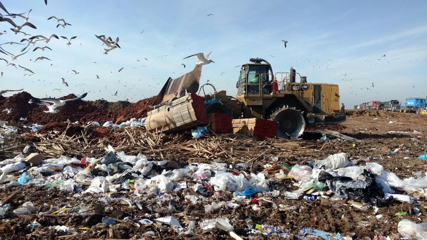 In this Dec. 15, 2016 photo provided by Immigration and Customs Enforcement, U.S. customs officials destroy a batch of tropical lumber at a landfill in Houston, after 1,770 metric tons of it was held at docks for more than a year on evidence it was illegally harvested in Peru. The amount in the seizure was enough to cover three football fields. The importers paid the storage and disposal fees as part of a no-fault administrative settlement. The wood's impoundment was a pyrrhic victory in Washington's efforts to get Peru to clean up its notoriously corrupt timber industry. (ICE via AP)