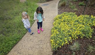 ADVANCE FOR SUNDAY, APRIL 30 AND THEREAFTER - In a Tuesday, April 11, 2017 photo, Inez Beltran, right, 3, and Nina Toler-Wells, 2, walk on the trail at Twelve Hills Nature Center in Dallas. Both are enrolled in Seed Preschool, a nature-based program that meets twice a week in an old school bus parked at Twelve Hills Nature Center in Oak Cliff. (Jae S. Lee//The Dallas Morning News via AP)