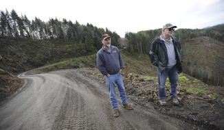 """FILE- In this Oct. 27, 2016 file photo, Mike Huffman, left, logging superintendent, and Howard """"Butch"""" Wright, vice president of operations, at Huffman-Wright Timber and Construction Operations, stand on the edge of a recent clear-cut by the company in the Elliot State Forest near Coos Bay, Ore.  The three officials responsible for Oregon's oldest state forest staked out positions on Thursday, May 4, 2017, on its future, with two advocating continued public ownership and the third supporting public ownership of its old-growth areas. (Amanda Loman/The World via AP, File)"""