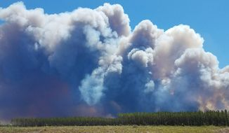 In this Saturday, May 6, 2017 photo provided by the Okefenokee National Wildlife Refuge smoke rises from a wildfire east of Fargo, Ga. Firefighters were battling Sunday to prevent the fire from spreading, authorities said. (Ben Palm/Okefenokee National Wildlife Refuge via AP)