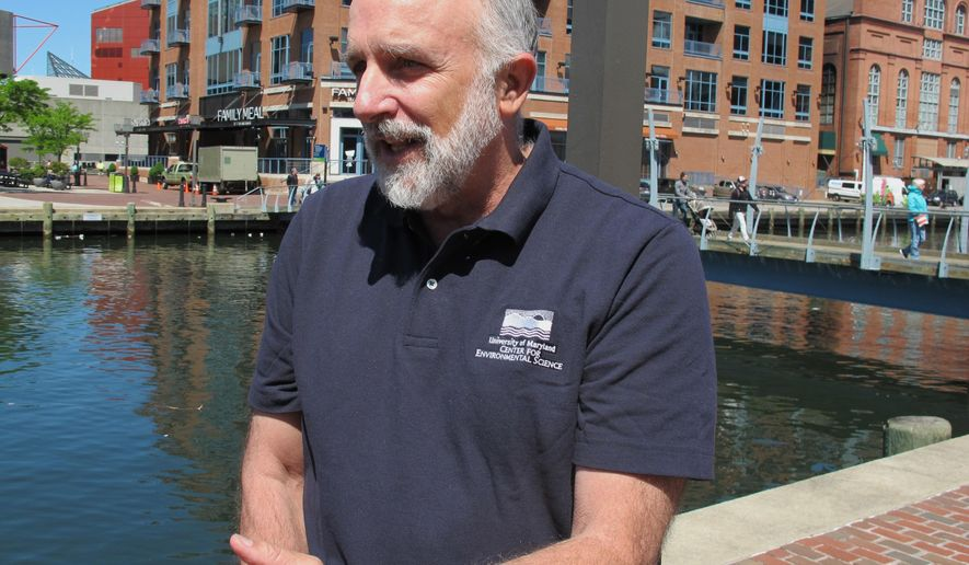 """Bill Dennison, vice president for science application at the University of Maryland Center for Environmental Science, talks about the health of the Chesapeake Bay during the release of a report card on the bay's health after a news conference in Baltimore on Monday, May 8, 2017. Dennison said a few years ago, the bay was in """"critical condition,"""" but it's been moved from the critical list to """"stable condition,"""" and is showing signs of improvement. The report card gave the nation's largest estuary a """"C"""" grade for overall health.  (AP Photo/Brian Witte)"""