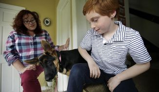 "In this Thursday, May 11, 2017 photo Susan Grenon, left, chats with her son Pauly, right, as their pet German Shepherd ""Ginger,"" center, looks on in an entryway to their home, in Smithfield, R.I. Guenon makes sure her son is lathered with sunscreen before he leaves for school in the morning, but the red-headed 10-year-old can't bring a bottle to reapply it without a doctor's note. (AP Photo/Steven Senne)"