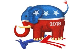 2018 Mid-term Elections Illustration by Greg Groesch/The Washington Times