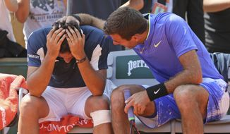 Spain's Nicolas Almagro, left, is comforted by Argentina's Juan Martin del Potro after he collapsed with a left knee injury in his second round match against at the French Open tennis tournament at the Roland Garros stadium, in Paris, France. Thursday, June 1, 2017. Almagro was unable to continue to play. (AP Photo/David Vincent)