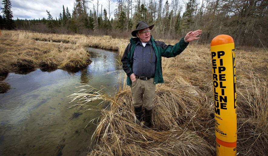 FILE - In this May 12, 2014 file photo, Paul Stolen, a retired state biologist, shows some of the sensitive wetland areas near Minnesota's Itasca State Park. State regulators will open a series of 22 public meetings on an oil pipeline project that opponents have dubbed the next Dakota Access pipeline struggle. Enbridge Energy is seeking approval from state regulators to replace its aging Line 3 pipeline across northern Minnesota. (Brian Mark Peterson /Star Tribune via AP, File)