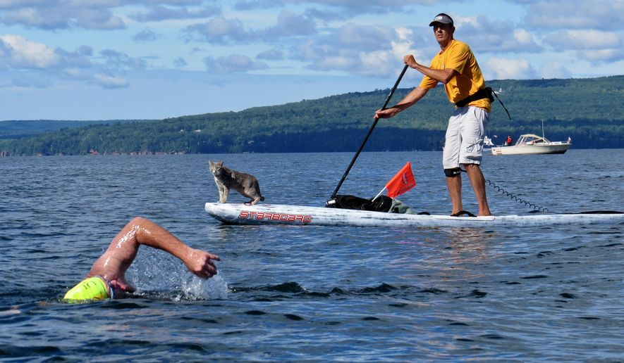 This Aug. 10, 2013 photo provided by Eric Iversen shows Bug the cat and Ken Lambrecht at the Point to La Pointe Swim from Bayfield, Wis., to Madeline Island in Lake Superior. (Eric Iversen via AP)