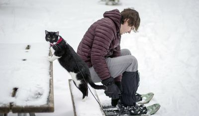 """This Jan. 25, 2016 photo provided by Kim Randolph shows Ruger, the """"adventure"""" cat, and Jeremy Vick in Marquette, Mich. (Kim Randolph via AP)"""