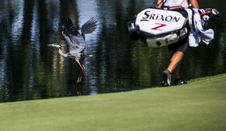 A great blue heron flies away as golfers approach the ninth hole during the first round of the St Jude Classic golf tournament, Thursday, June 8, 2017, in Memphis, Tenn. (Yalonda M. James/The Commercial Appeal via AP)