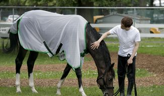 Assistant trainer Masaaki Minamida pats Epicharis as he grazed after it was announced that the horse was scratched from the 149th running of the Belmont Stakes horse race, Saturday, June 10, 2017, in Elmont, N.Y. (AP Photo/Peter Morgan)