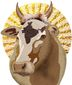 6_122017_b4-dsou-sacred-cow-8201.jpg