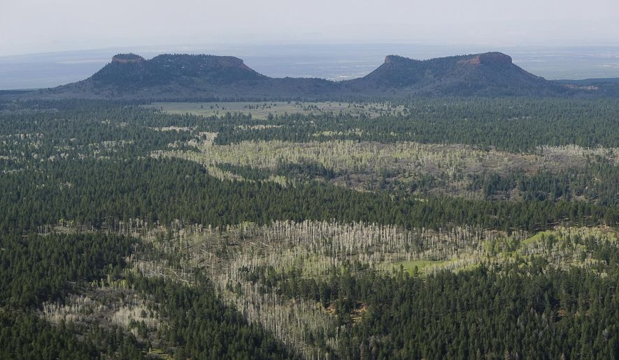 FILE--In this Dec. 28, 2016 file photo,the two buttes that make up the namesake for Utah's Bears Ears National Monument in southeastern Utah.  Interior Secretary Ryan Zinke is recommending that the new Bears Ears National Monument in Utah be reduced in size and says Congress should step in to designate how selected areas of the 1.3 million-acre site are categorized.  (Francisco Kjolseth/The Salt Lake Tribune via AP, file)/The Salt Lake Tribune via AP)
