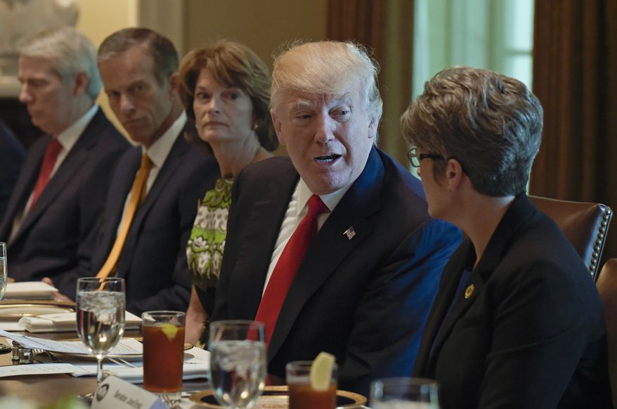 President Donald Trump talks with Sen. Joni Ernst, R-Iowa in the Cabinet Room of the White House in Washington, Tuesday, June 13, 2017,  before having lunch with Republican Senators. From left are, Sen. Rob Portman, R-Ohio, Sen. John Thune, R-S.D., and Sen. Lisa Murkowski, R-Alaska the president and Ernst. (AP Photo/Susan Walsh)
