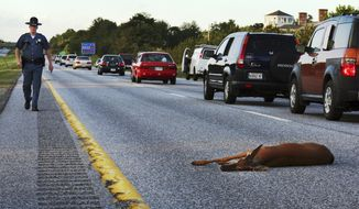 FILE - In this June 11, 2008, file photo, a wounded deer lies in the road after being hit by a car on the northbound lane of Interstate 295 near Freeport, Maine. In Oregon, under a road kill bill passed overwhelmingly by the Legislature and signed by the governor, motorists who crash into the animals can now harvest the meat for human consumption. (AP Photo/Pat Wellenbach, File)