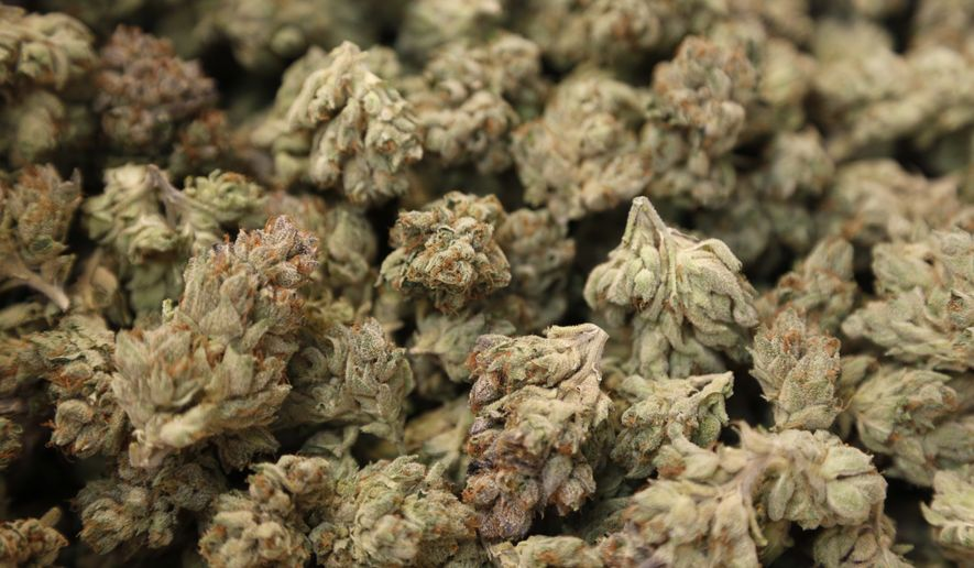 In this Thursday, June 22, 2017, photo, marijuana buds are ready to be weighed and packaged for sale at Breakwater Treatment and Wellness in Cranbury, N.J. (AP Photo/Seth Wenig) **FILE**