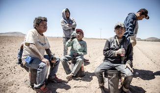 This June 13, 2017, photo shows workers from Guerrero state in Mexico taking a break after clearing rocks from Mexican farmer Pedro Suderman's fields just south of the U.S.-Mexico border.  (Roberto E. Rosales/The Albuquerque Journal via AP)