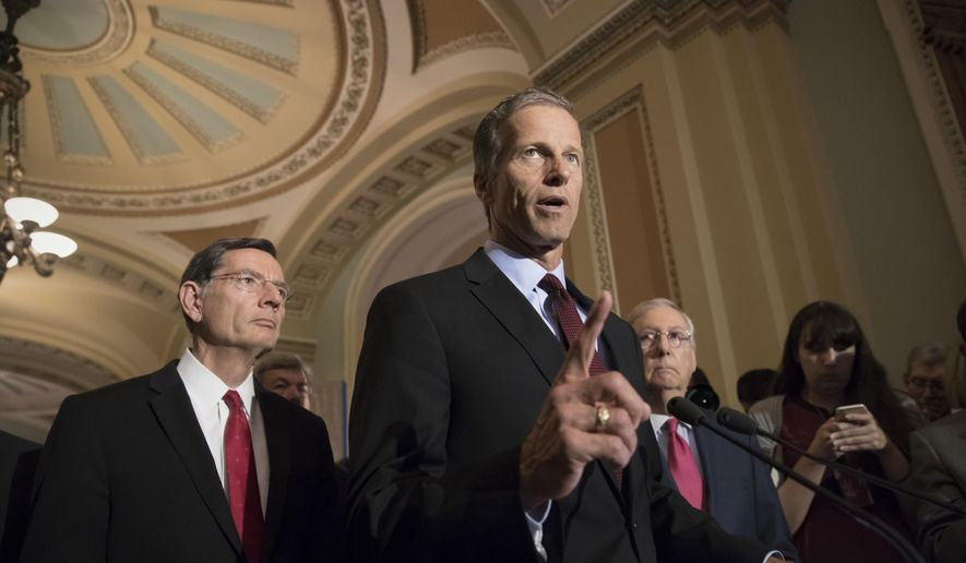 In this May 16, 2017, file photo, Sen. John Thune, R-S.D., speaks on Capitol Hill in Washington. (AP Photo/J. Scott Applewhite, File)