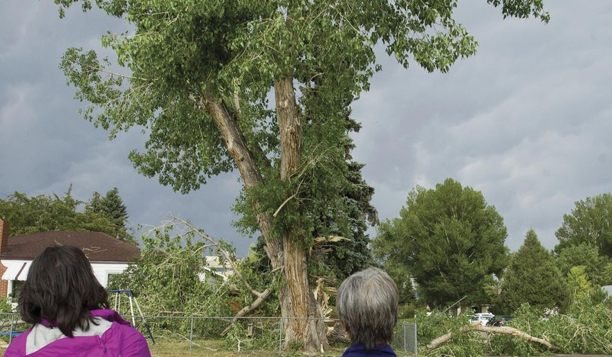 In this Tuesday, June 27, 2017, photo, Song Win Kempany, left, and her mother, Hephzibah Tate, right, survey a damaged tree in Laramie, Wyo. Wind gusts of up to 90 mph knocked out power and downed trees in Laramie on Tuesday. (Shannon Broderick/Laramie Daily Boomerang via AP)
