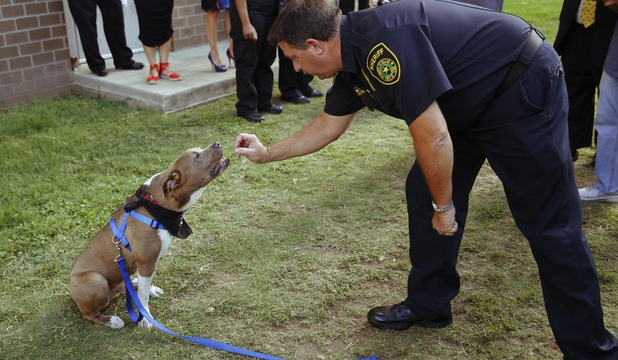 "In this Wednesday, June 28, 2017 photo, E. Wall, right, a dog liaison officer, works with ""Skippy"" for demonstration purposes during a press conference for the Home for Hounds program put on by Dallas County Sheriff's Department at Kays Tower Jail in Dallas. Approved by county commissioners last August, the program pairs Grand Prairie animal shelter dogs with inmates who train them for five weeks. (Nathan Hunsinger/The Dallas Morning News via AP)"