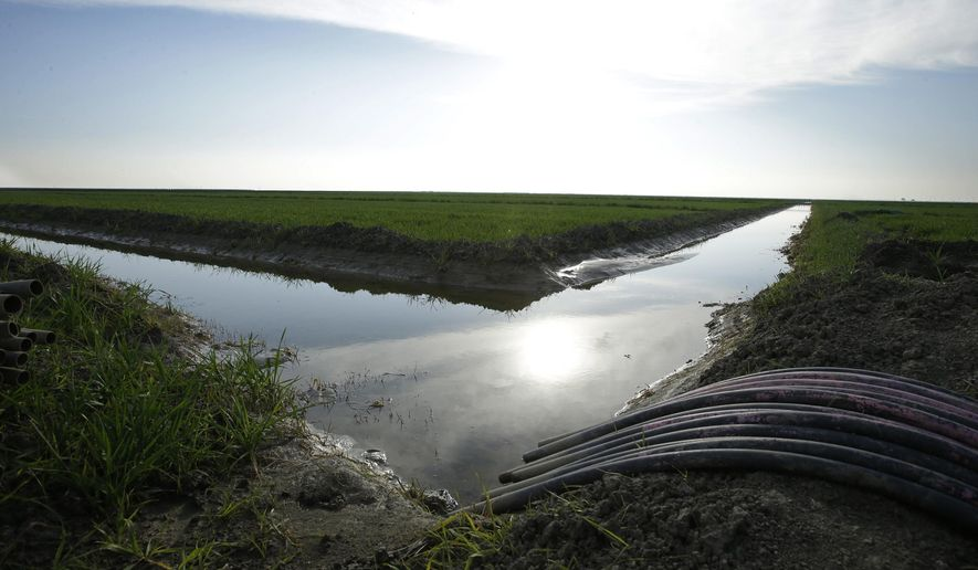 FILE - In this Feb. 25, 2016, file photo, water flows through an irrigation canal to crops near Lemoore, Calif. Environmental and fishing groups have filed challenges Thursday, June 29, 2017, seeking to block California Gov. Jerry Brown's ambitious plan to build a pair of massive water tunnels in California. (AP Photo/Rich Pedroncelli, File)