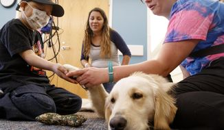 In this Wednesday, May 24, 2017 photo, Rafael Moreno, left, holds Sven's paw with his mother Irma Moreno, center, and Child Life Specialist and Facility Dog Handler Britta Carr, right,, in Omaha, Neb. Sven, a two year old golden retriever, works 40 hours a week at Children's Hospital in Omaha helping patients with exercise, comfort and demonstrating procedures. (Sarah Hoffman/Omaha World-Herald via AP)