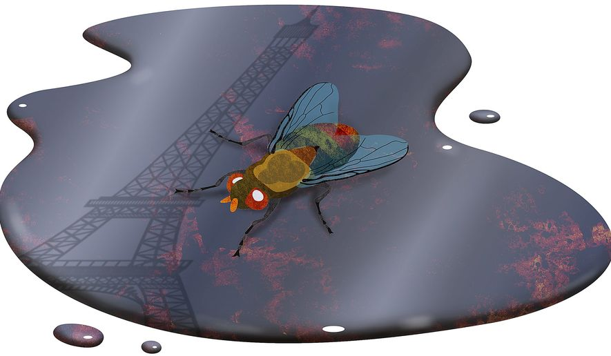 A Fly in the Climate Change Ointment Illustration by Greg Groesch/The Washington Times