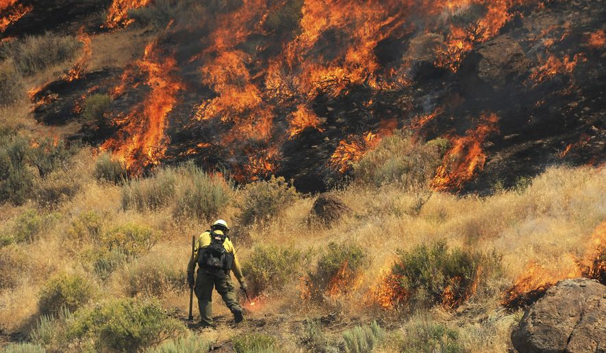 Crews work to protect a home site as they battle a wildfire along Pyramid Highway, Wednesday, July 5, 2017, near Reno, Nev. A day after beating back flames to prevent damage to dozens of rural homes, fire officials on Wednesday advised more residents to evacuate with their animals ahead of one of several blazes sweeping across hot, dry northern Nevada rangelands. (Jason Bean/The Reno Gazette-Journal via AP)
