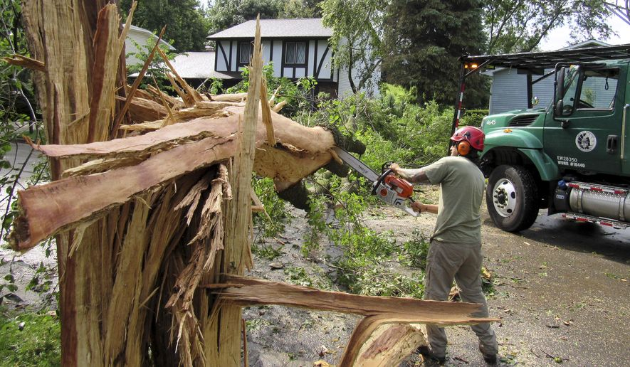 Jay Miller of the Madison Forestry Department used a chainsaw on a damaged ash tree after a lightning strike destroyed it early Wednesday July 12, 2017, in Madison, Wis. Heavy thunderstorms are flooding roads and low-lying areas in southern Wisconsin. (Barry Adams/Wisconsin State Journal via AP)