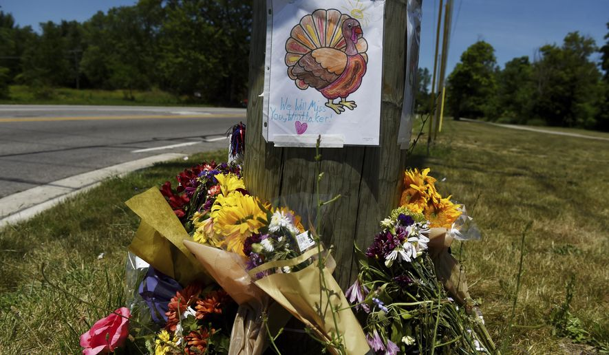 In this Thursday, July 6, 2017 photo, a memorial for Whittaker, a wild turkey who lived near the intersection of Whittaker and Textile roads sits in Ypsilanti Township, Mich. The Humane Society of Huron Valley said the turkey known as Whittaker was accidentally hit on July 3 and was euthanized due to severe injuries. (AP Photo/The Ann Arbor News, Melanie Maxwell)