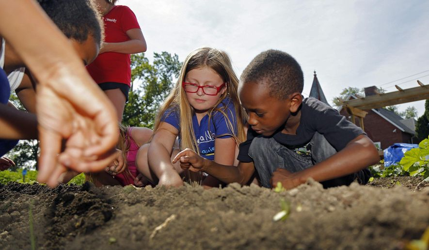 In this June 29, 2017, photo, Daren Daniels, 6, and Kaitlyn Tope, 10, from the Children's Defense Fund Freedom Schools program at Highland Elementary plant radishes seeds at the Highland Youth Garden in the Hilltop neighborhood of Columbus, Ohio. (Kyle Robertson/The Columbus Dispatch via AP)