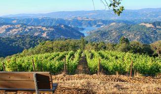(Winegrowers of Dry Creek Valley)