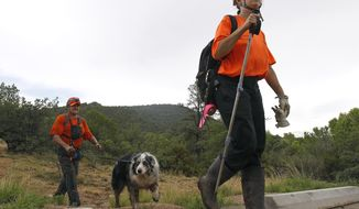 Members of the Tonto Rim Search and Rescue team exit a section of forest after searching along the banks of the East Verde River for victims of a flash flood, Sunday, July 16, 2017, in Payson, Ariz. Search and rescue crews, including 40 people on foot and others in a helicopter, have recovered bodies of children and adults, some as far as two miles down the river after Saturday's flash flooding poured over a popular swimming area inside the Tonto National Forest in central Arizona. (AP Photo/Ralph Freso)