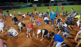 "Arkansas Travelers female fans search the infield for a buried diamond ring during the teams annual ""Diamond Dig"", presented by Lee Ann's Fine Jewelry, after a game against the Midland RockHounds on May 25, 2017 at Dickey-Stephens Park in Little Rock, Arkansas.  Midland defeated Arkansas 8-1.  (Mike Janes/Four Seam Images via AP)"