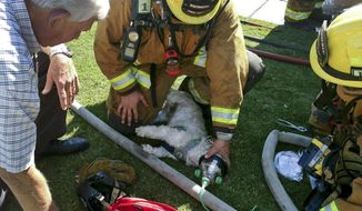 "In this photo provided by Bakersfield Fire Department shows firefighters resuscitating a Shih Tzu dog, named ""Jack,"" after pulling him from a burning home, Friday, July 21, 2017, in Bakersfield, Calif. Using a pet oxygen mask donated to the department by a local Girl Scout troop, firefighters slowly bring Jack back to life. (John Frando/Bakersfield Fire Department via AP)"