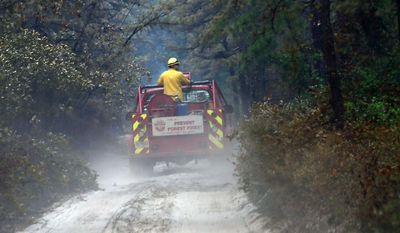 Members of the New Jersey State Forest Fire Service search a back road at Wharton State Forest Friday, July 21, 2017, near Washington Township, N.J. About 50 firefighters from the New Jersey State Forest Fire Service and local fire departments were fighting the blaze Friday  (Craig Matthews/The Press of Atlantic City via AP)
