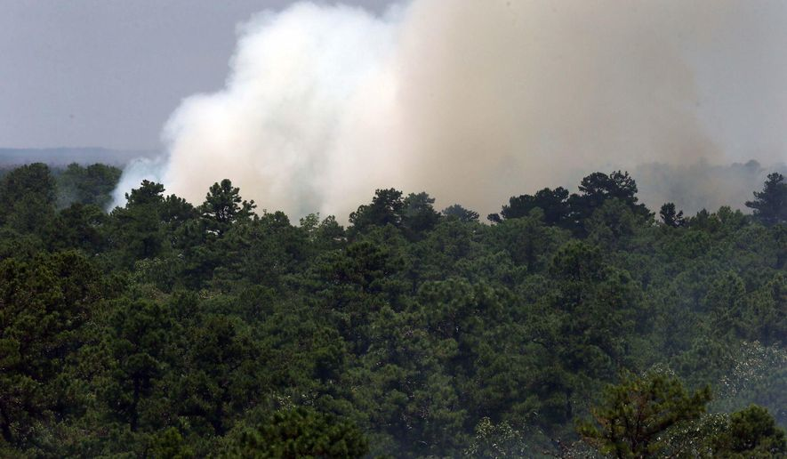 Smoke rises above the tree line as a fire burns at Wharton State Forest, Friday, July 21, 2017, near Washington Township, N.J. About 50 firefighters from the New Jersey State Forest Fire Service and local fire departments were fighting the blaze Friday  (Craig Matthews/The Press of Atlantic City via AP)