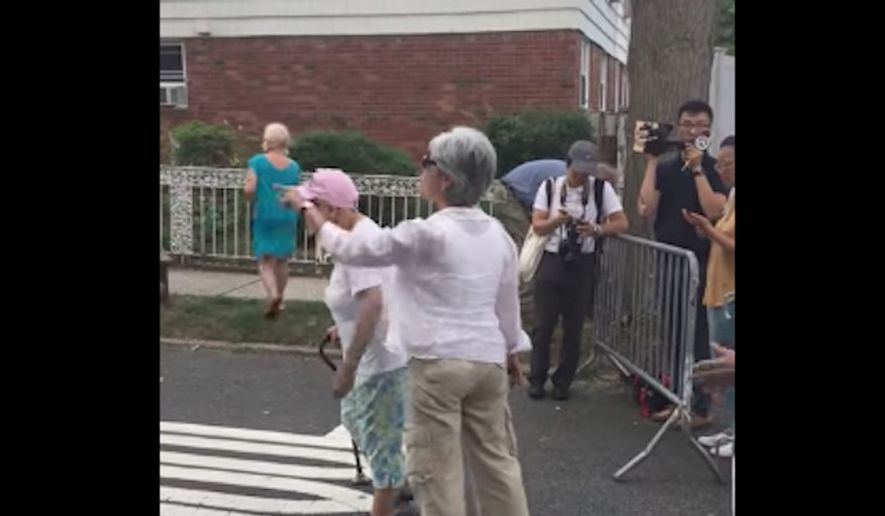 Vickie Paladino, 63-year-old Queens resident, was filmed berating New York City Mayor Bill de Blasio for his controversial trip to Germany, saying the mayor neglected his city's police officers in order to join G-20 protesters in Hamburg. (YouTube/@EVOCATEUR)