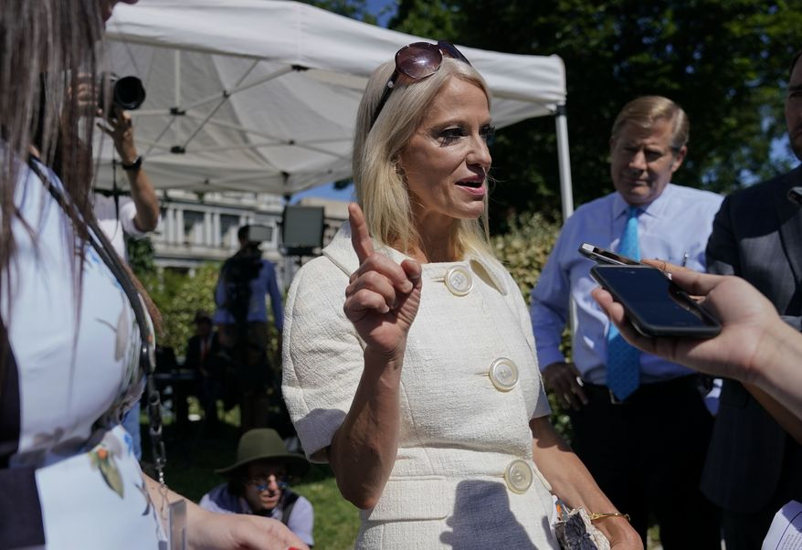 Counselor to the President Kellyanne Conway speaks to members of the media after doing a interview at the White House in Washington, Tuesday, July 25, 2017. The White House is hosting a Regional Media Day with live radio and TV broadcasts from the White House Driveway with interviews with White House senior staff, Cabinet members and agency staffers. (AP Photo/Pablo Martinez Monsivais)