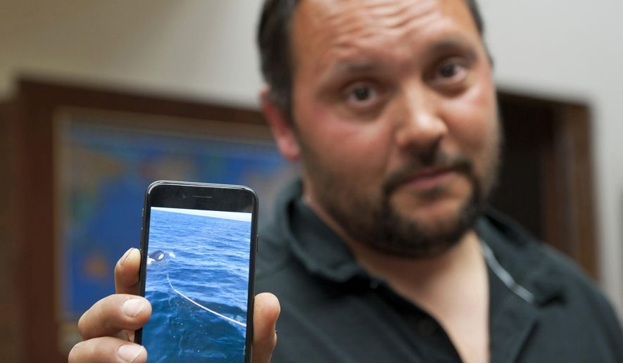 In this Monday, July 24, 2017 photo Victor Littlefield holds up a cellphone video of an orca whale pulling a line off his boat near Sitka, Alaska. Littlefield of Sitka says his boat was attacked by an orca during a fishing excursion with his 14-year-old son and two others. Littlefield says the party was aboard his anchored 33-foot aluminum boat Sunday near Little Biorka Island when it lurched to one side. (James Poulson/The Daily Sitka Sentinel via AP)