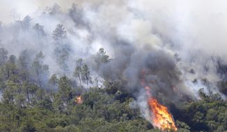A forest fire rages on a hillside in the outskirts of La Londe-les-Maures on the French Riviera, Wednesday, July 26, 2017. Authorities ordered the evacuation of 10,000 people as fires hopscotched around the Riviera for a third day Wednesday, tearing through the forest of La Londe-les-Maures. (AP Photo/Claude Paris)