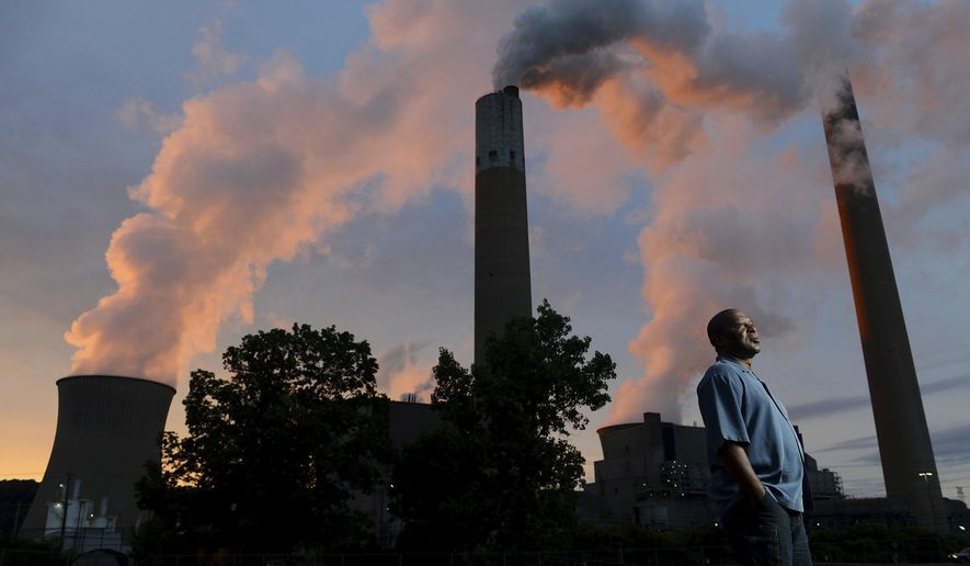 Herman Marshman stands outside the First Energy Bruce Mansfield coal fired power plant Friday, July 7, 2017, in Shippingport, Pa.   Marshman ran for president of the International Brothers of Electrical Workers Local 272, with no union leadership experience.  (Rebecca Droke/Pittsburgh Post-Gazette via AP)