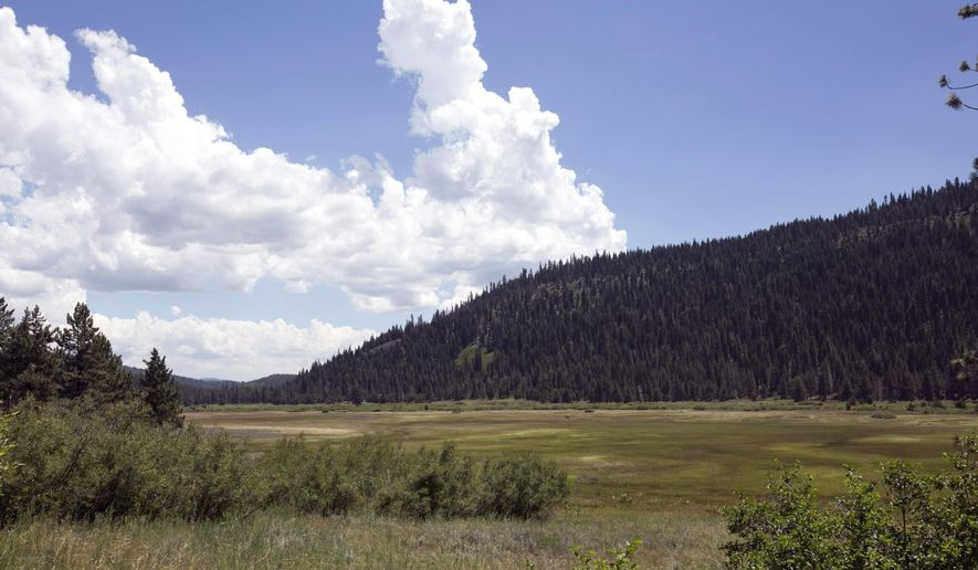 In this Tuesday, July 25, 2017 photo, clouds float near the Lower Carpenter Valley near Truckee, Calif.  The wild Sierra Nevada meadow hidden from public view for more than a century is opening for tours after it was purchased by conservation groups. The Lower Carpenter Valley land north of Lake Tahoe contains rare carnivorous plants and threatened birds and serves as a migration corridor for other species. (AP Photo/Rich Pedroncelli)