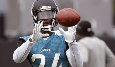 Jacksonville Jaguars running back T.J. Yeldon catches a pass during NFL football training camp, Thursday, July 27, 2017, in Jacksonville, Fla. (AP Photo/John Raoux)