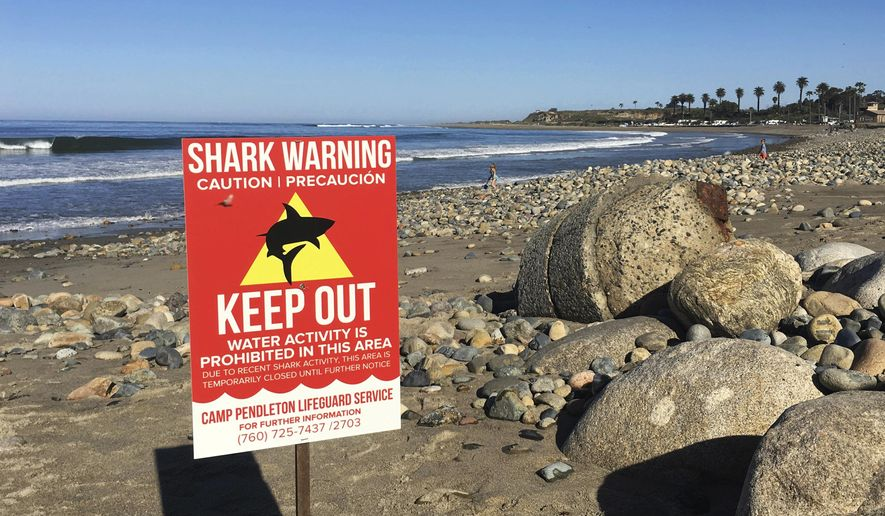 """FILE - In this Sunday, April 30, 2017 photo, a sign warns beach goers at San Onofre State Beach after a woman was attacked by a shark in the area Saturday, along the Camp Pendleton Marine base in San Diego County, Calif. The surfer attacked by a shark off Southern California earlier this year recalls punching the predator and digging her fingers into its eye. Leeanne Ericson tells ABC's """"Good Morning America"""" that she initially thought a curious seal was knocking the underside of her surfboard near San Diego last April. (Laylan Connelly/The Orange County Register via AP, File)"""