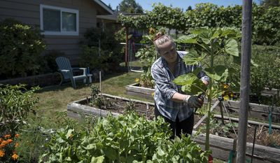 ADVANCE FOR RELEASE AT 12:01 a.m. PDT, SATURDAY, JULY 28, 2017 AND THEREAFTER  In this Wednesday, July 12, 2017 photo, Kelli Rowe works in her garden at her Hazel Dell home in Vancouver, Wash. After yoga in the morning, Rowe said she usually spends time working in her garden and enjoying the birds and fresh air. (Alisha Jucevic/The Columbian via AP)